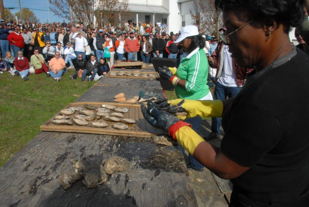 Virginia State Oyster Shucking Competition at the Urbanna Oyster Festival